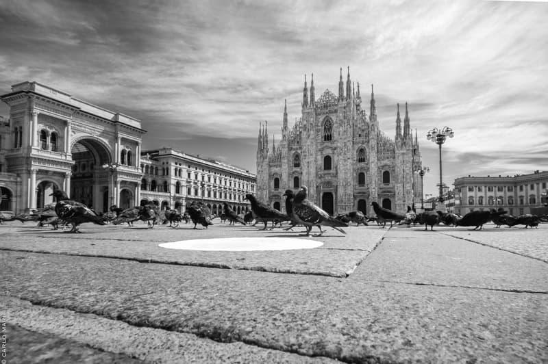 IO MILANO PIazza Duomo con piccioniok Pocketnews